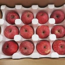 洛川外围苹果-生鲜水果-辰颐物语